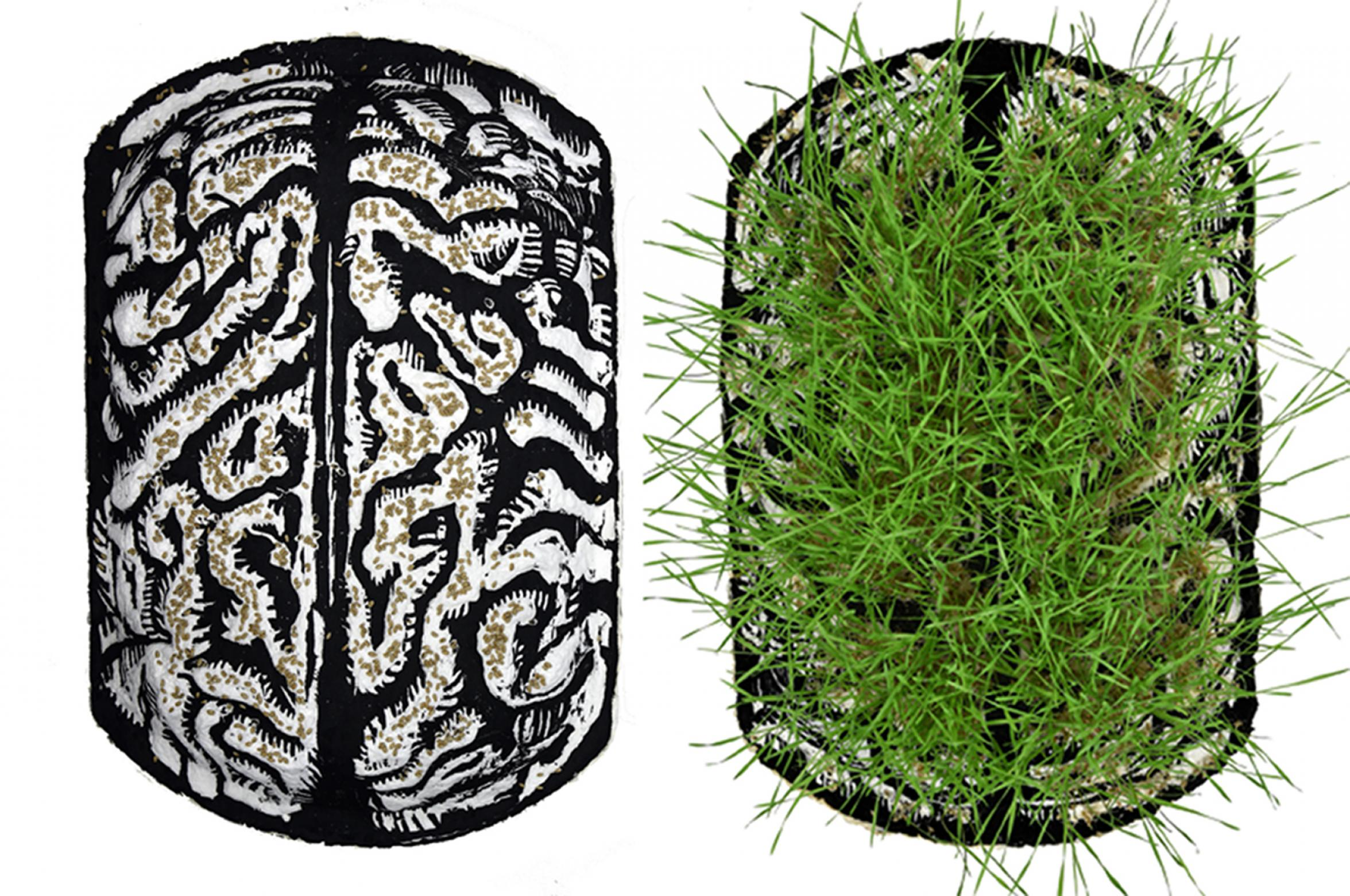 prints of a brain and grass