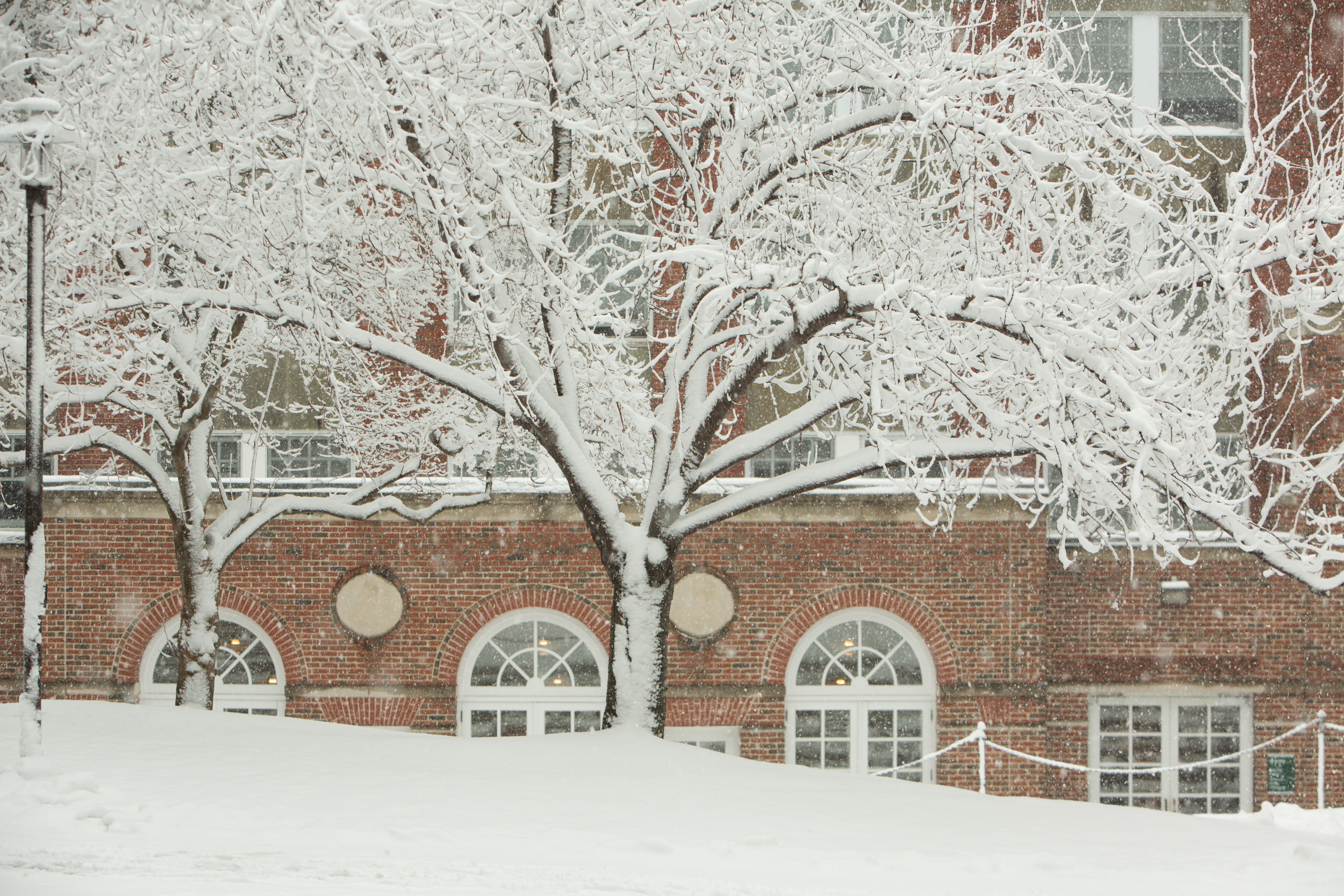 A snowy scene on Doble Campus at Lesley University.