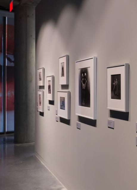 gallery wall with photographs