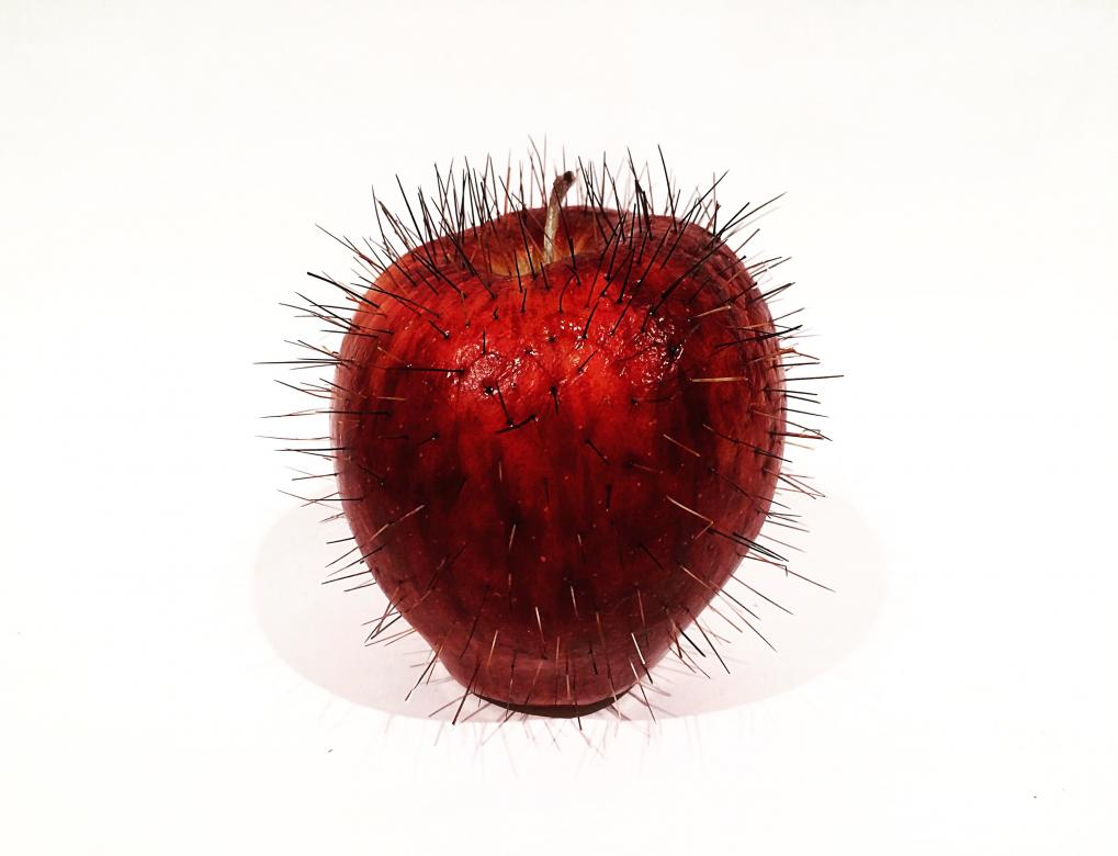 photograph of apple with pins in it