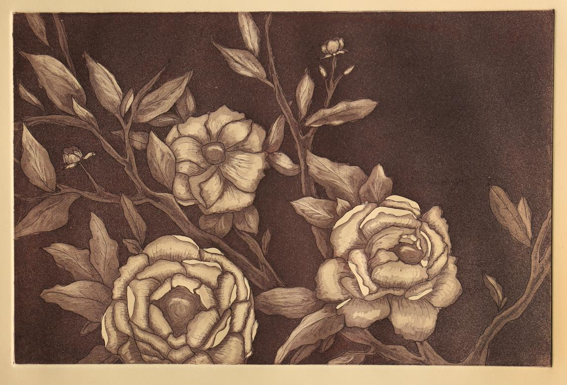 print of roses in purple