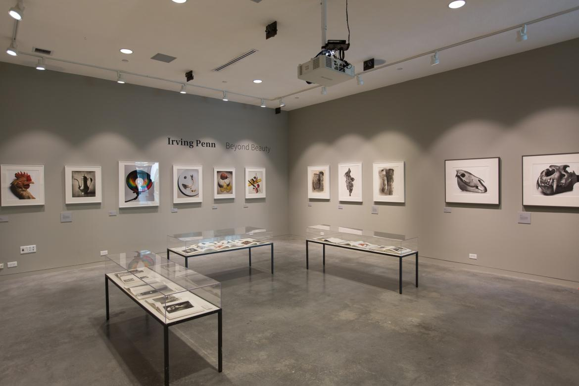 Raizes Gallery: Irving Penn Exhibition