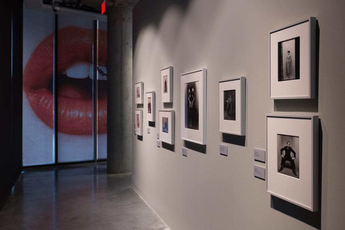Roberts Gallery: Irving Penn Exhibition