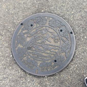 Manhole cover with dragonflies.