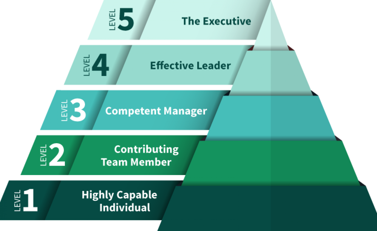 Five levels of executives 14