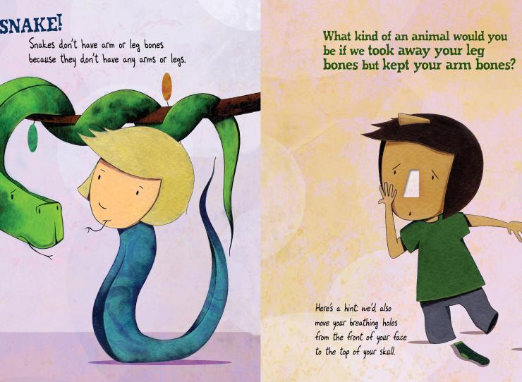 "A layout from Sara Levine's book Bone by Bone - on the left a snake looks at a girl who has a body for a snake. It says ""Snakes don't have arm or leg bones becuase they don't have any arms or legs."" On the right, a boy with no nose and his legs are missing beneath his trousers - ""What kind of an animal would you be if we took away your leg bones but kept your arm bones? Here's a hint: We'd also move your breathing holes from the front of our face to the top of your skull."""