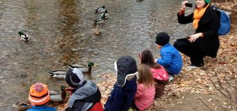 Teacher and students on shoreline of pond, ducks swimming nearby