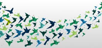 blue and green paper birds flying across a white background