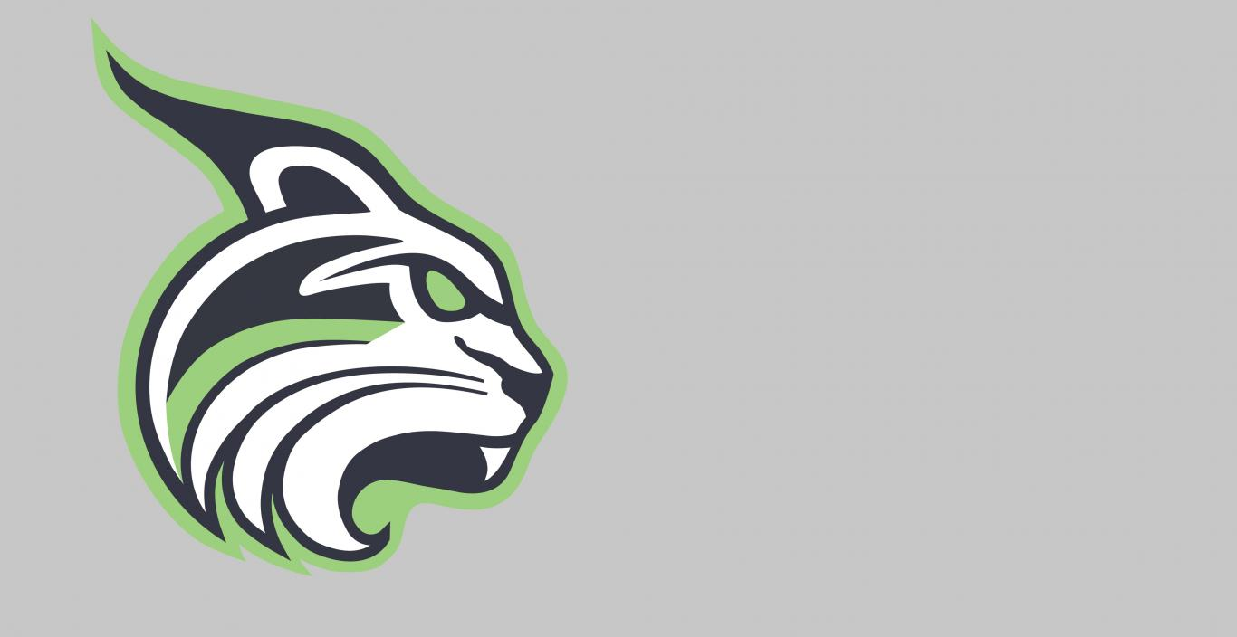 The Lesley Lynx logo on a gray background.