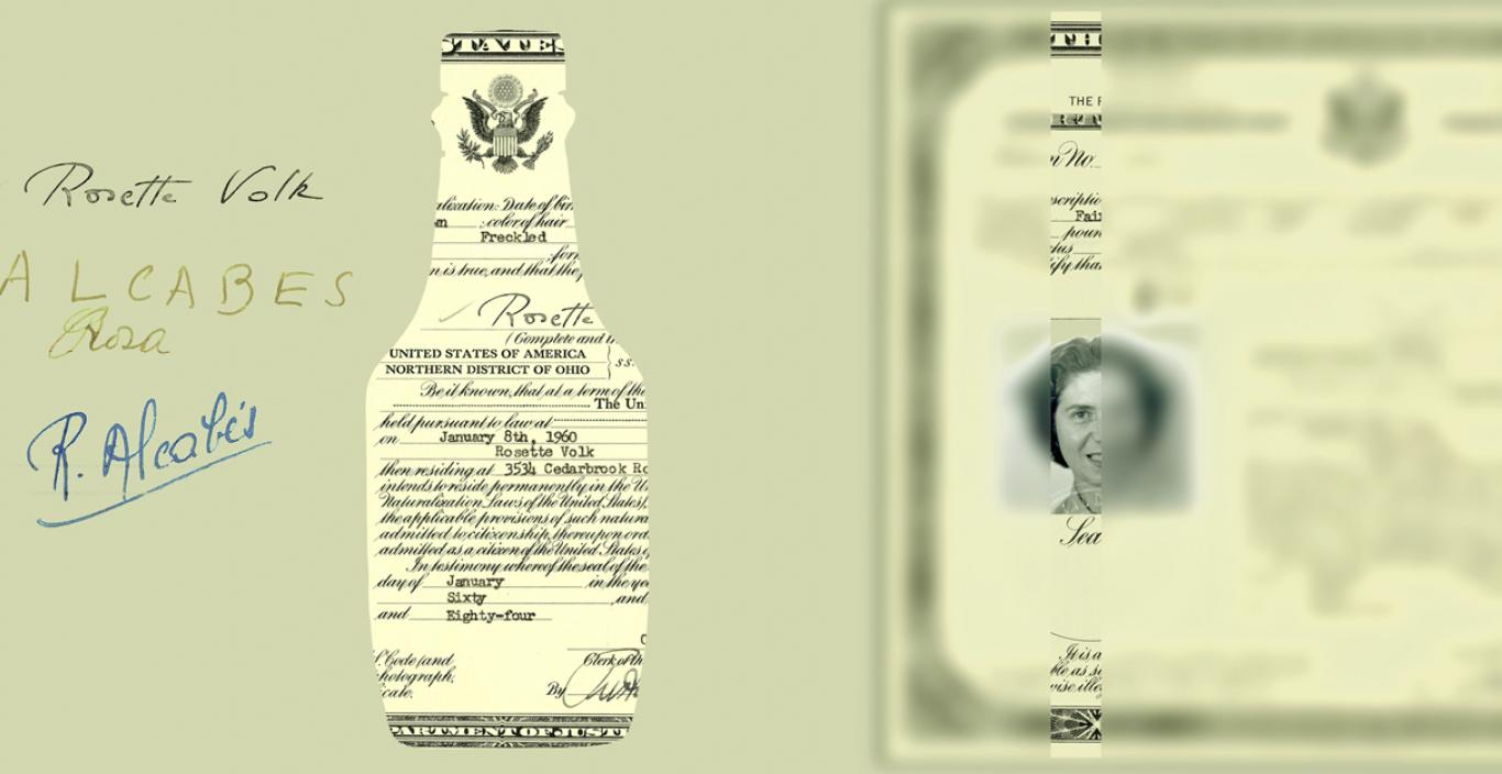 Artist's collage of immigration documentation