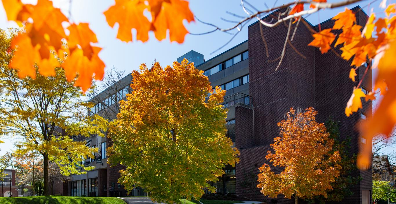 doble campus during the fall