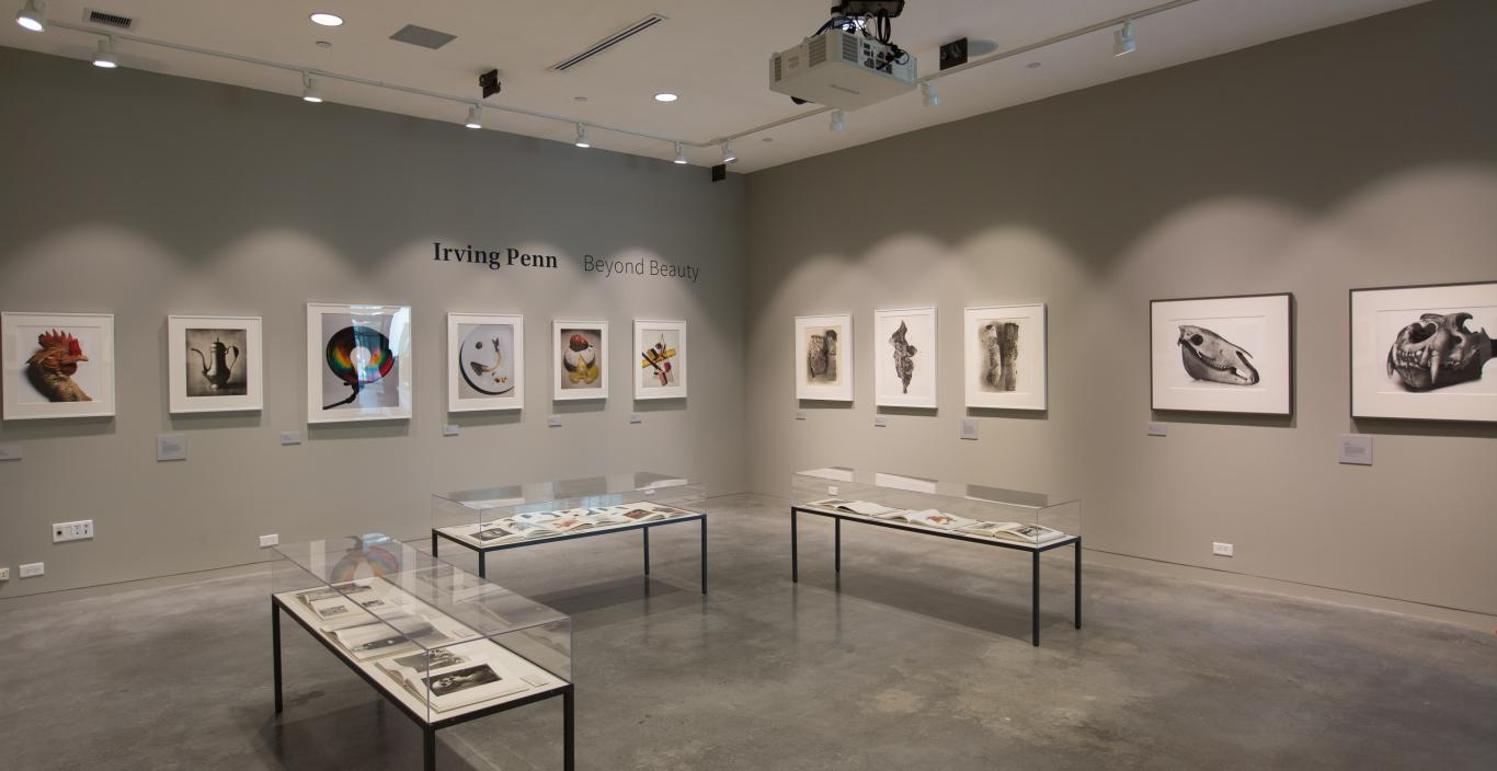 How to design an art gallery - Raizes Gallery Irving Penn Exhibition