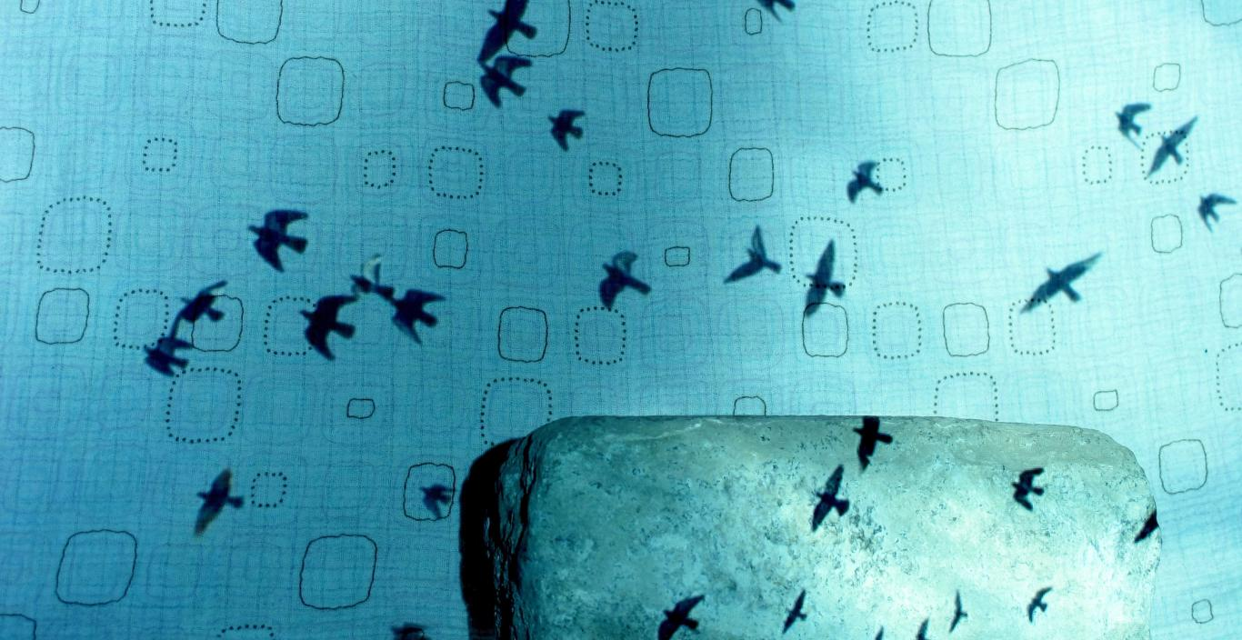 layered image of cloth, shadows of birds, and Havana street cobblestone