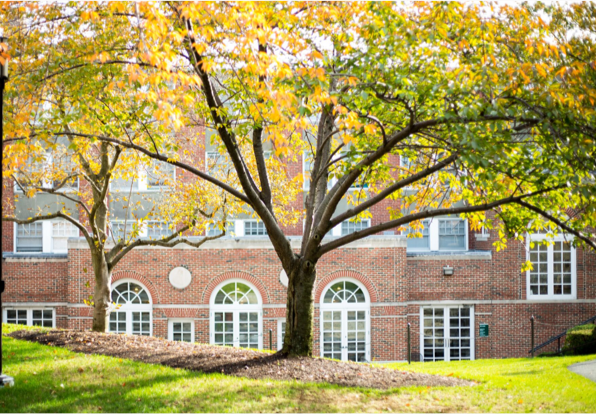 photo of one of lesley's buildings with a beautiful tree in front of it