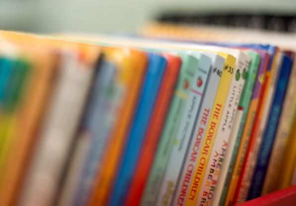 Collaborative Teaching Books ~ Center for reading recovery and literacy collaborative